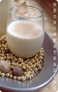 {Raw & Naturally Sweetened} Homemade Eggnog