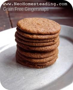 Grain Free: Gingersnap Cookies