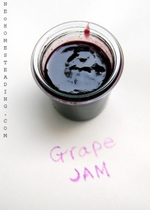 Seasonal Sensation: Black Grape Jam