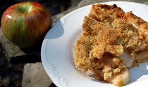 Dutch Apple Pie (Apple Crumb Pie)