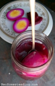Naturally Fermented Beets (and Spiced Beet Eggs)