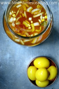 Ethereal & Nutritious: Pickled Pub Eggs, Curried Duck Eggs