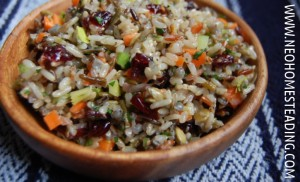 Fermented Wild Rice Salad