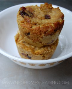 Overnight Oats: Cheap & Hearty Baked Oatmeal