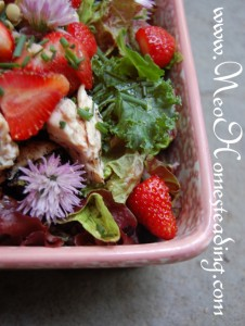 Summery Salad with Strawberries, Chive Blossoms and Balsamic Vinaigrette