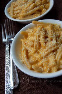 Hearty & Wholesome, Stove Top Pumpkin Macaroni and Cheese