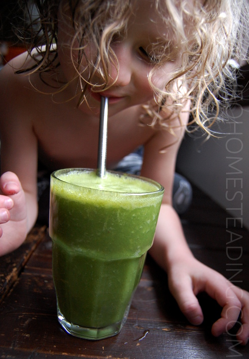 GREENSMOOTHIEBOY
