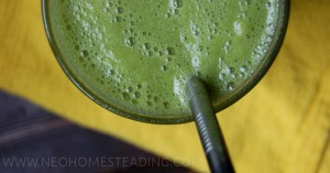 Easy Green Smoothies (Smoothie Freezer Bags)