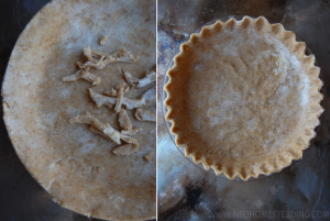 Sprouted Whole-Wheat: Flaky & Buttery Pie Crust